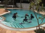 Swimming Pool Training Session
